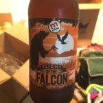 Mike's Flight of the Falcon APA Review